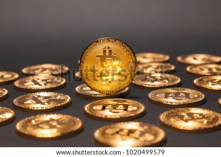 Golden Bitcoins with a single Bitcoin standing out