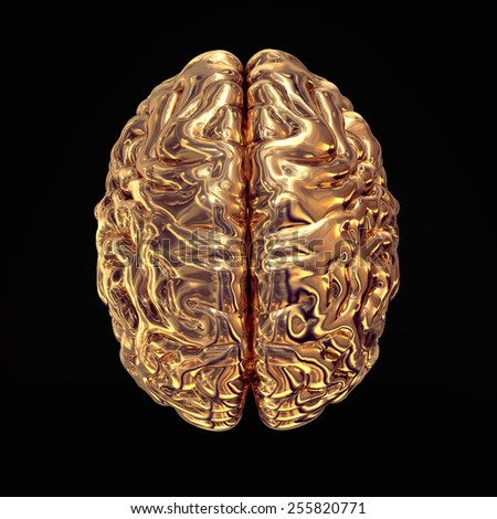 Golden brains on black  background. High resolution. 3D render. Concept.  - stock photo