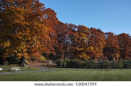Bronx Stock Images Royalty Free Images Vectors Shutterstock