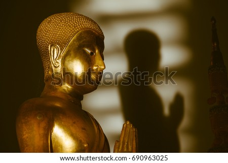 golden buddha and shadow