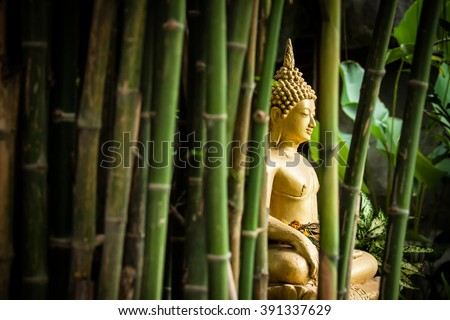 Golden Buddha in the Bamboo Forest. - stock photo