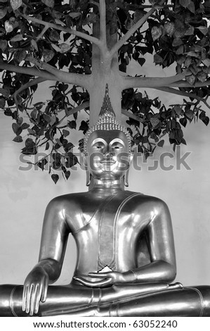 Golden Buddha under the tree in black and white