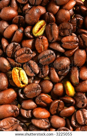 Golden coffee beans in the middle of ordinaries beans