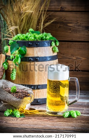 Golden color of light beers - stock photo