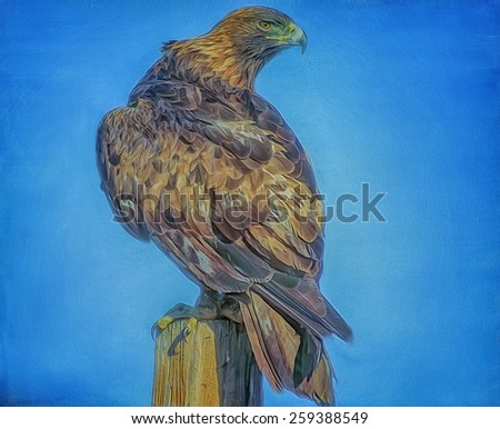 Golden eagle on fence post - stock photo