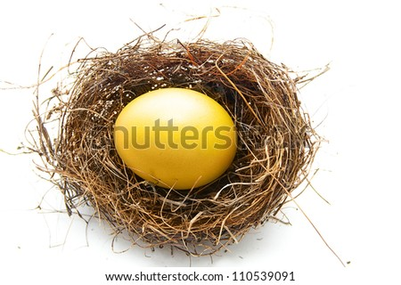 golden egg in a bird's nest, on white