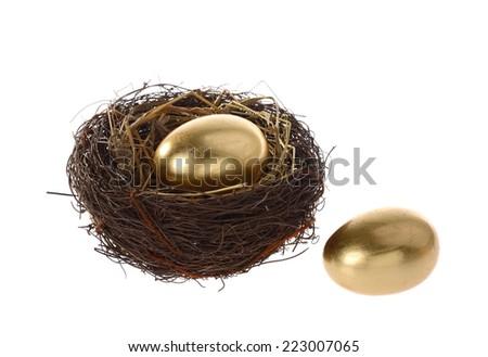 golden egg in bird nest - stock photo