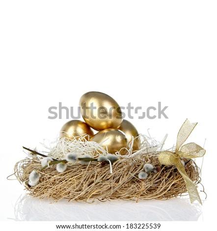Golden Egg in the Nest  - stock photo