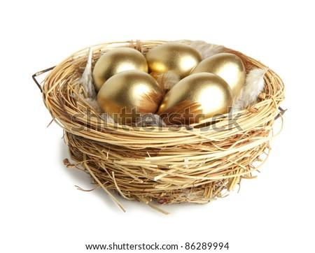 Golden egg in the nest  isolated - stock photo