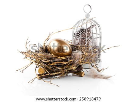 golden egg in the nest isolated on white background - stock photo