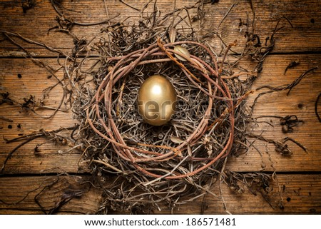 Golden egg in the nest over wooden background with copy text  - stock photo