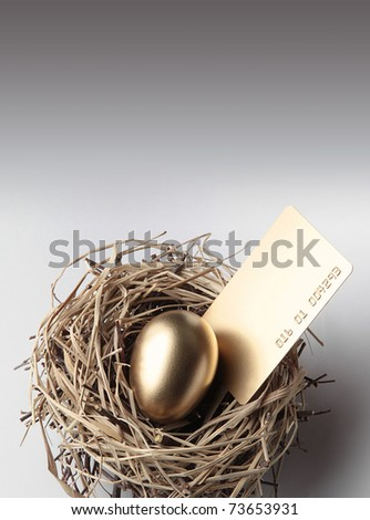 Golden Egg in the Nest with Credit Card - stock photo