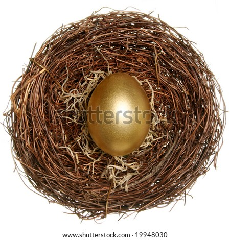 Golden Egg on a nest isolated on white - stock photo