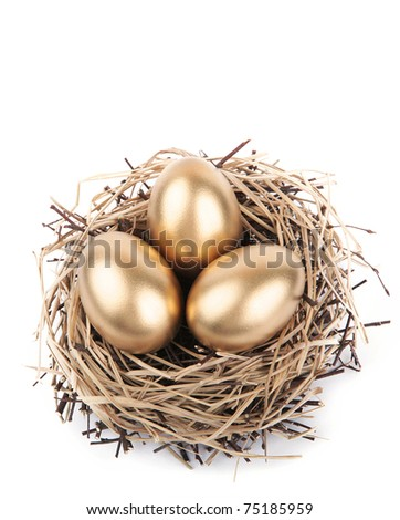 Golden Eggs in the Nest - stock photo
