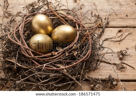 Golden eggs in the nest over wooden background with copy text  - stock photo