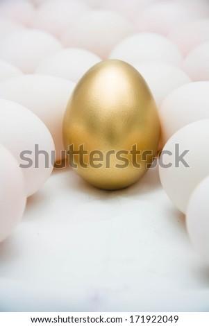 Golden eggs with duck eggs - stock photo