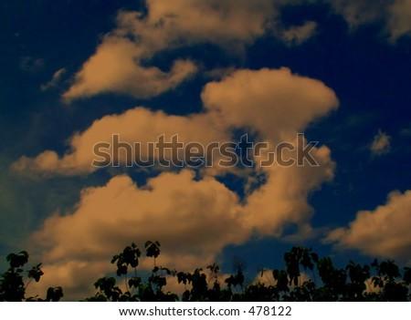 Golden evening sunset view - stock photo