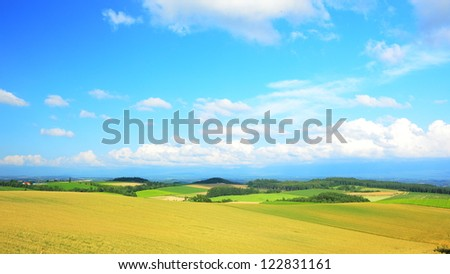 golden farms in Hokkaido, Japan - stock photo