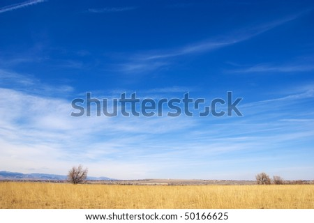 Golden field and blue sky give a feeling of vast space on the lovely Colorado prairie with view of tiny homes and blue mountains in the distance - stock photo
