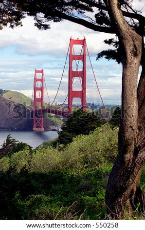 Golden Gate Bridge framed by tree, San Francisco, California.
