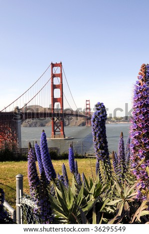 Golden Gate Bridge of San Francisco from park - stock photo
