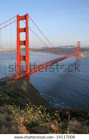 GOLDEN GATE BRIDGE WITH FLOWERS - stock photo