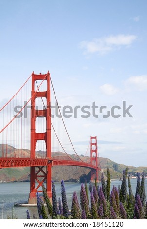 Golden Gate Bridge with Flowers in the Foreground