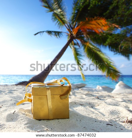 golden gift on ocean beach under palm - stock photo