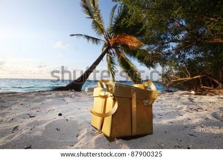 golden gift on ocean beach under palm