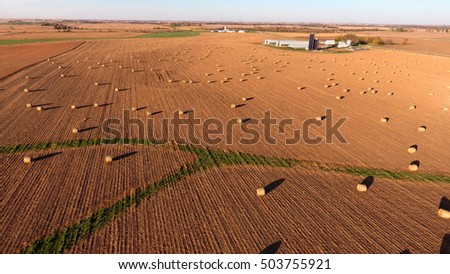 Golden Hay Bales in a Large Open Field During Harvest Season
