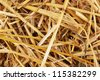 Golden hay close-up - stock photo