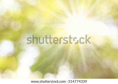 Golden heaven light Hope concept abstract blurred background from nature with sun splash and gold leaves - stock photo