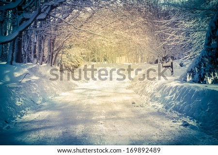 Golden lit afternoon light on snow covered country road - stock photo