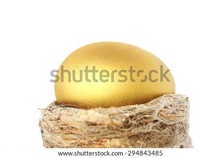 Golden Nest Egg - stock photo