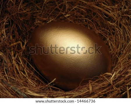 Golden Nestegg - stock photo