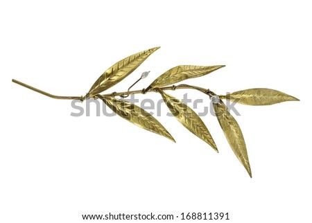 golden olive twig isolated on white - stock photo