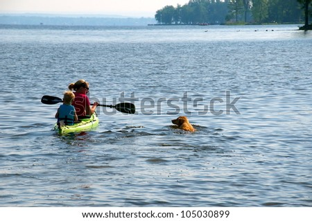 Golden Retriever swims along side the kayak - stock photo