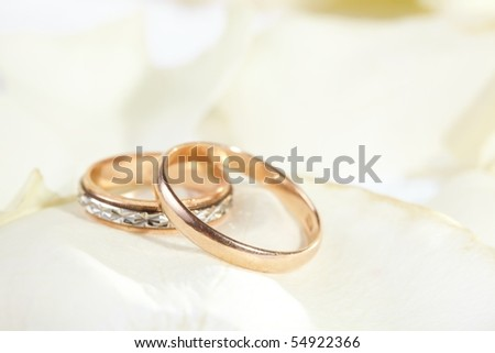 golden rings and  rose petals - stock photo