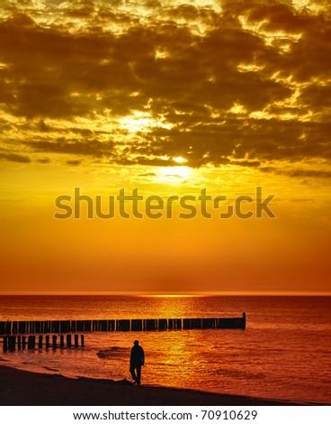 Golden sea - stock photo