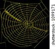 Golden Spiderweb - stock photo