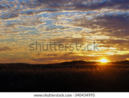 Golden Sunrise On Coastal Dunes