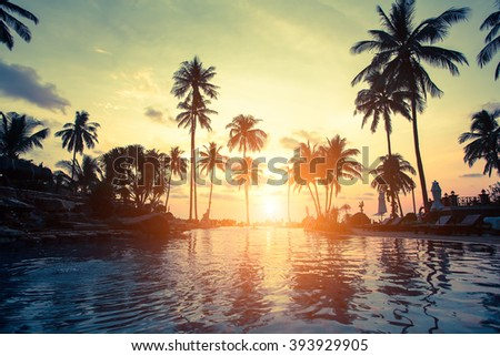 Golden sunset on the sea coast with palm trees reflection in the water. - stock photo