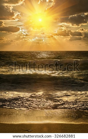 Golden sunset on the sea shore - stock photo