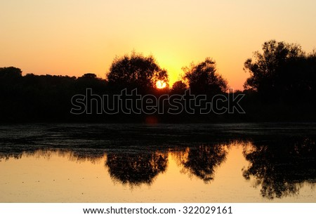 Golden warm tranquil sunset over the lake. Silhouettes of trees against the backdrop of the setting sun and a cloudless sky. The reflection in the calm water. - stock photo