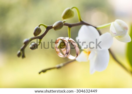 Golden wedding rings hanging on white orchid - stock photo