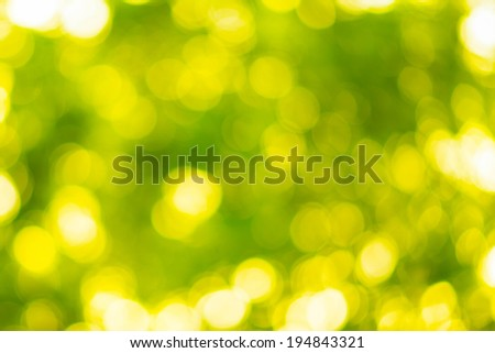 Golden yellow background Abstract nature