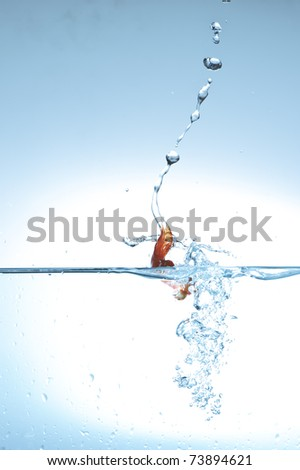 goldenfish fall into water - stock photo