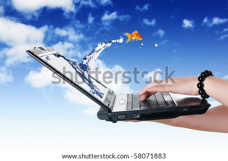 Goldfish and laptop. Collage. - stock photo