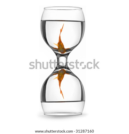 goldfish in an isolated hourglass