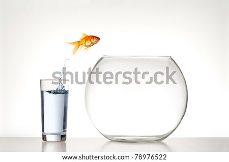 Goldfish jumping from a glass of water into an empty fishbowl - stock photo